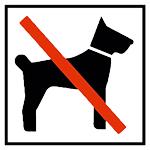 domáce zvieratá nie sú povolené